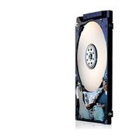 160GB Hitachi Travelstar HTS723216A7A364