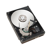 80GB Western Digital (WD800AAJB)